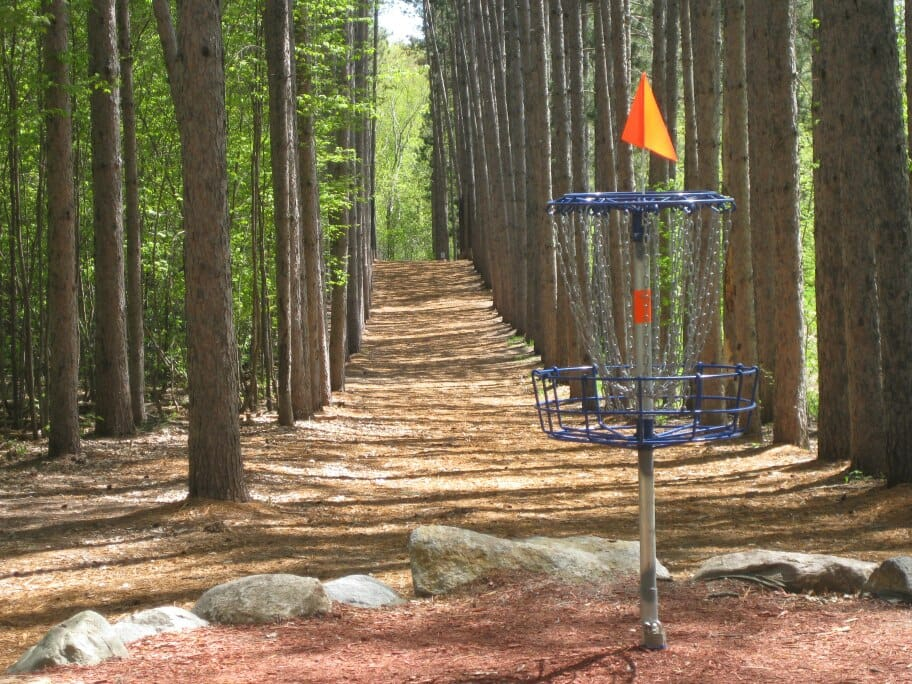 The signature Hole 4 at Blue Ribbon Pines in East Bethel, Minnesota. Photo: Blue Ribbon Pines Disc Golf Club